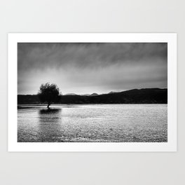 The lonely tree in the sea  Art Print