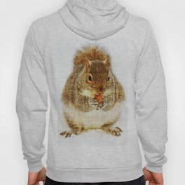 Squirrel with an Acorn Hoody