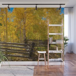 Aspen Autumn Color I - Southern Utah Wall Mural