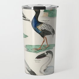 Okens Allgemeine Naturgeschichte by Lorenz Oken published in 1843 a lithograph of pied avocet and oy Travel Mug