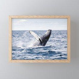 Humpback Whale Ocean Framed Mini Art Print