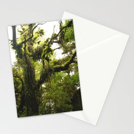 Biodiversidad vegetal Stationery Cards