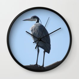 Great Blue Heron with a bird's eye view Wall Clock