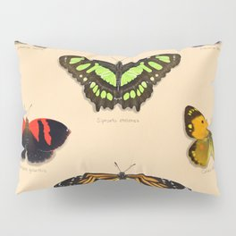 Butterfly Collection Pillow Sham