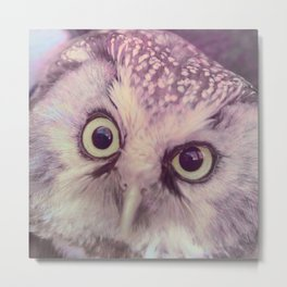 Dirty Look Owl Metal Print