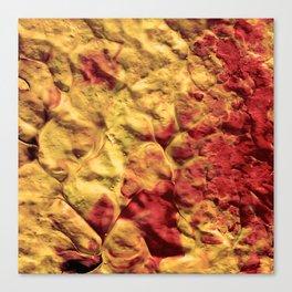 Volcano Spiral Canvas Print