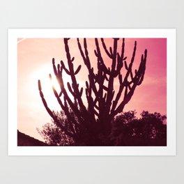 Cactus Sky Love Art Print