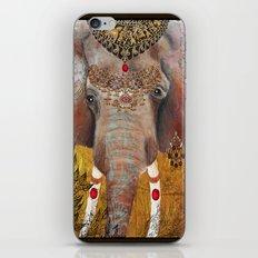 Gilded Elephant of Jaipur iPhone & iPod Skin