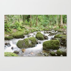 Windermere Creek Canvas Print