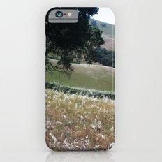 California Live Oak iPhone 6s Slim Case