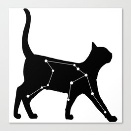 Aquarius Cat Canvas Print