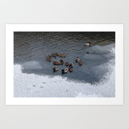 Photo 101 Art Print