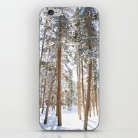 narnia iPhone & iPod Skins featuring Narnia by Alyson Cornman Photography