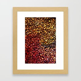 Multicolored Coffee Beans Framed Art Print