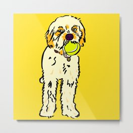 Ralph the Cavapoo Metal Print