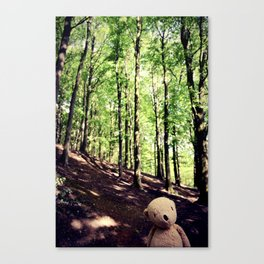 If You Go Down To The Woods Today Canvas Print