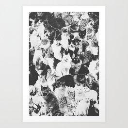 Cats Forever B&W Art Print