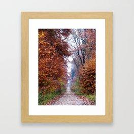 Walking in the Elm Framed Art Print