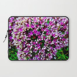 Butterfly Stonecrop Laptop Sleeve