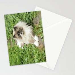 Lord Niles the Ragdoll Stationery Cards
