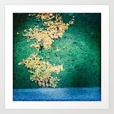 Autumn in the summer - just like America Art Print