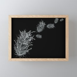 Flying Feathers Black and White Framed Mini Art Print