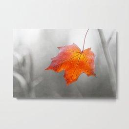 Velvet Autumn Metal Print