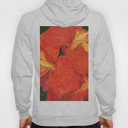 Cana Lily by Teresa Thompson Hoody