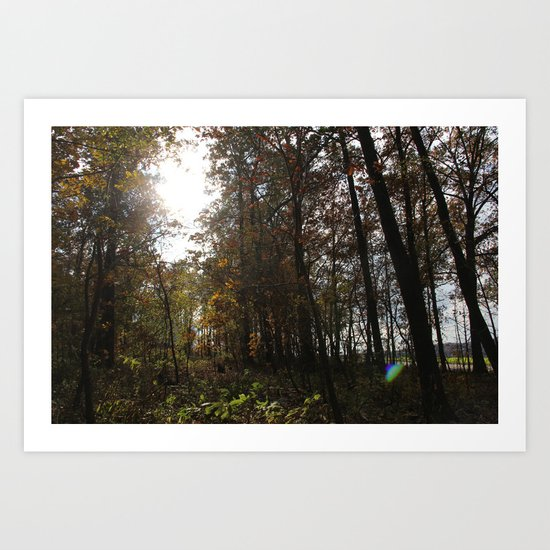 Fall Backyard Art Print