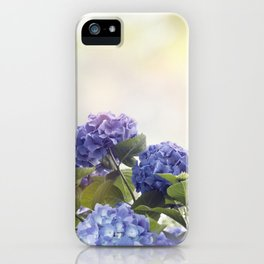 blue hydrangea flowers in the garden iPhone Case