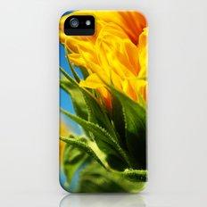 sunflower take 2. Slim Case iPhone (5, 5s)