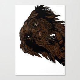 Flatcoated Canvas Print