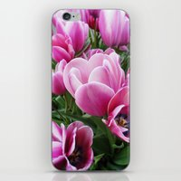 tulips iPhone & iPod Skins featuring tulips by Liudvika's Lens
