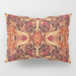 Cinnamon Potpourri Pillow Sham