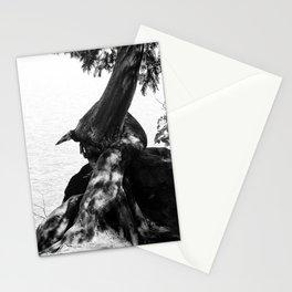 Star Lake Twist Stationery Cards