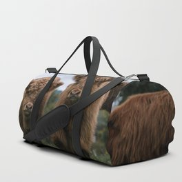 Scottish Highland Cattle Calves - Babies playing II Duffle Bag