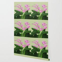 Anthurium Wallpaper