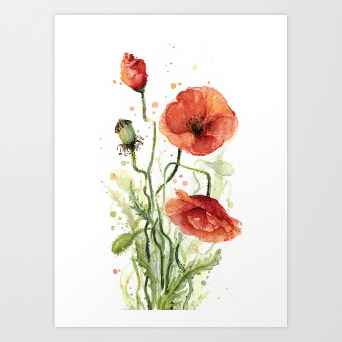 Water Colour Poppy Poppies Canvas Wall Art Picture Print