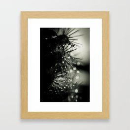 drops on thorns Framed Art Print