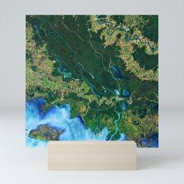 132. Winds Trigger Pond Growth Mini Art Print