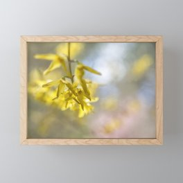 Forsythia Framed Mini Art Print