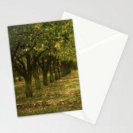 Hazelnuts in Oregon Stationery Cards