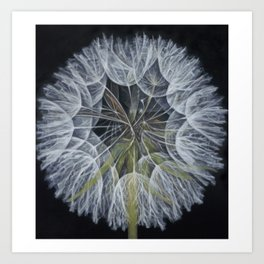 Crown of Wishes Art Print