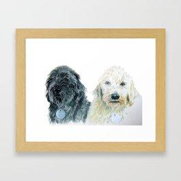 Two Labradoodles Framed Art Print