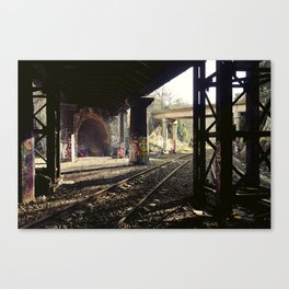 Stopped in Your Tracks Canvas Print