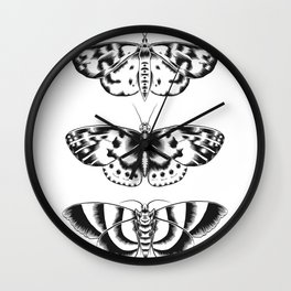 Moth Tryptic Wall Clock