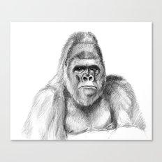 Gorilla male sketch SK020 Canvas Print