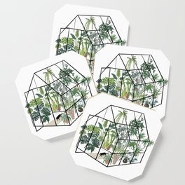 greenhouse with plants Coaster