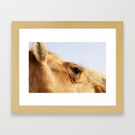 Ready for my close up #2 Framed Art Print