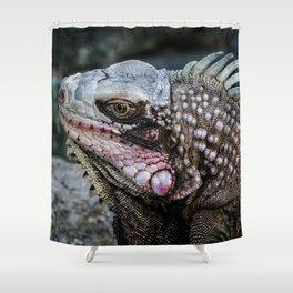 Portrait of an Iguana Shower Curtain
